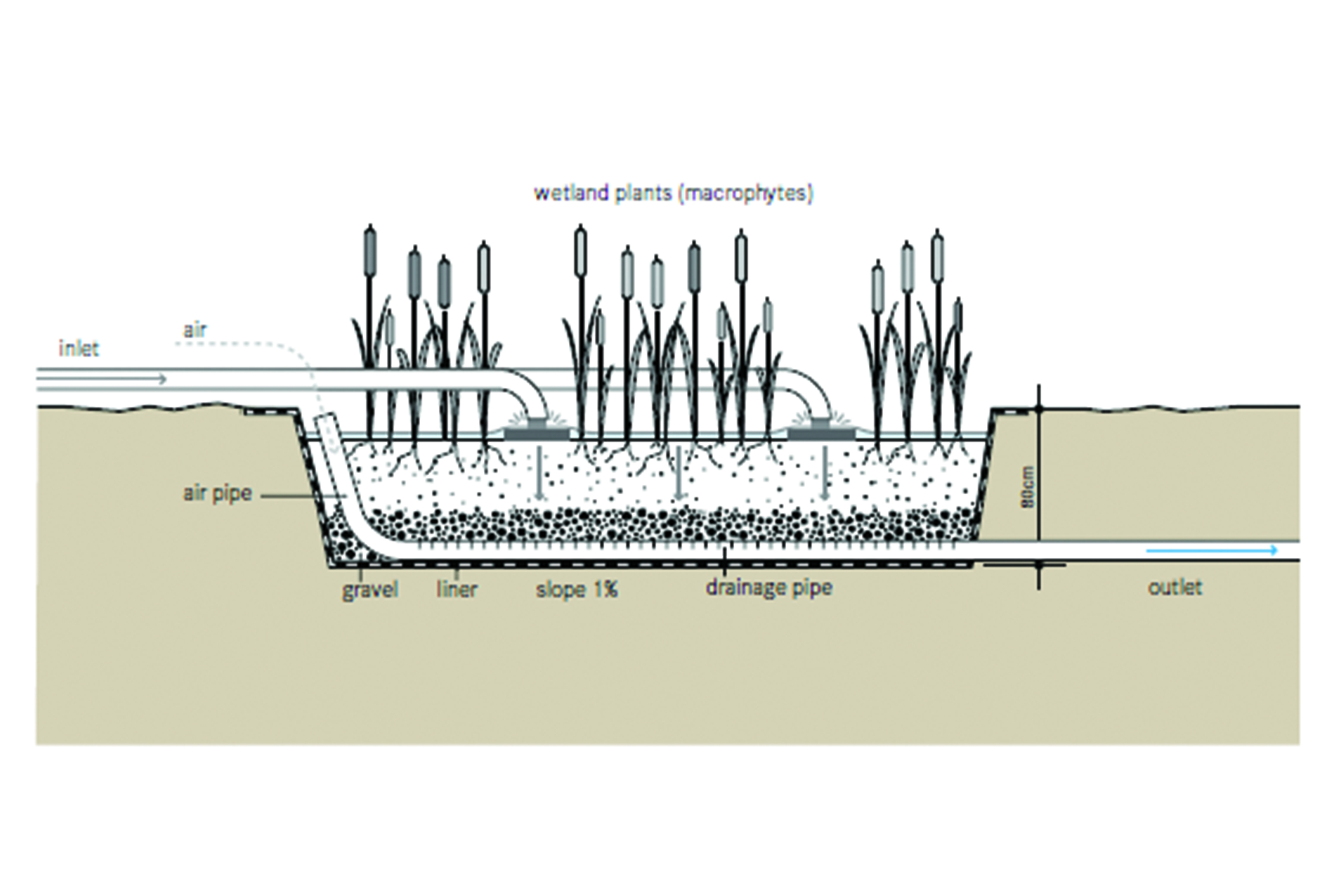 100 Wastewater Treatment Exam Study Guide E And E